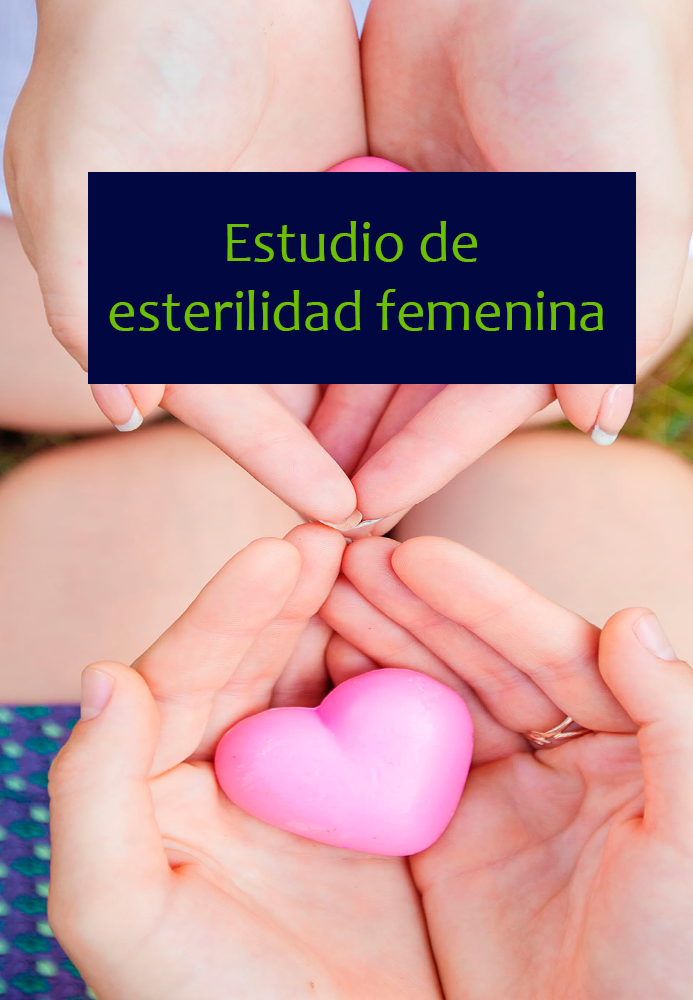 ESTUDIO-FEMENINA