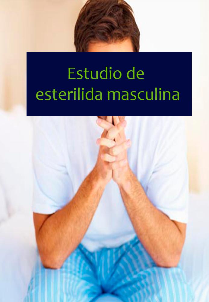estudio-masculino